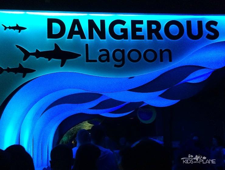 Ripleys Aquarium of Canada in Toronto Ontario Reveiw