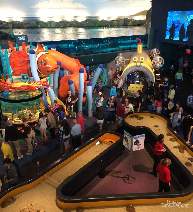 Ripleys Aquarium of Canada in Toronto Ontario with Kids