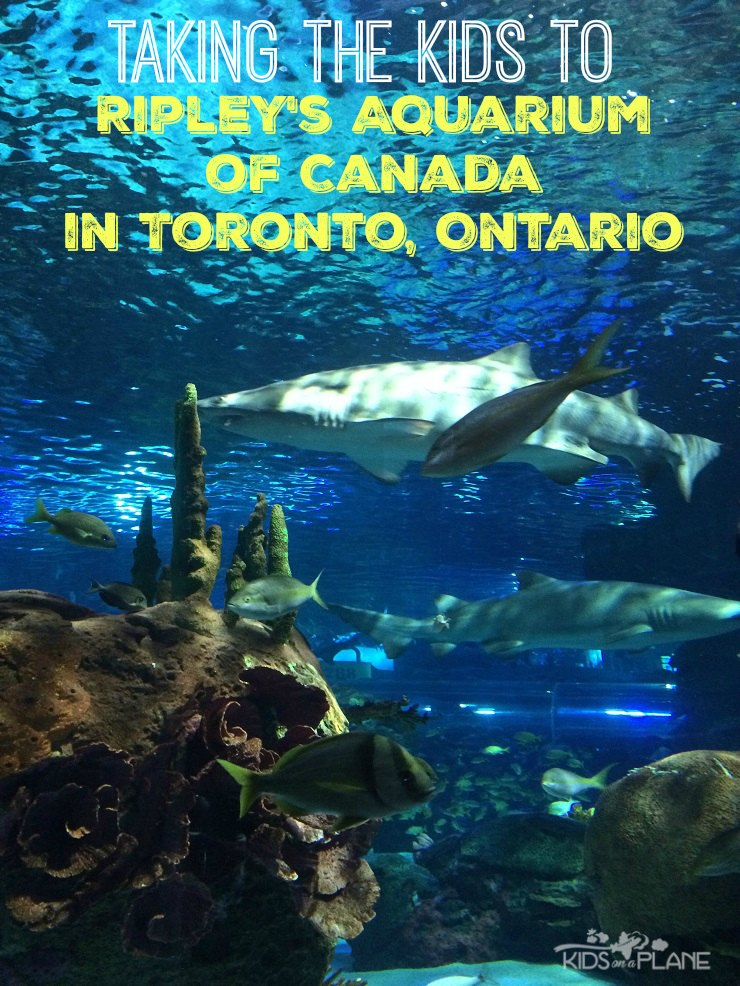 Ripleys Aquarium of Canada with Kids Review and Travel Tips