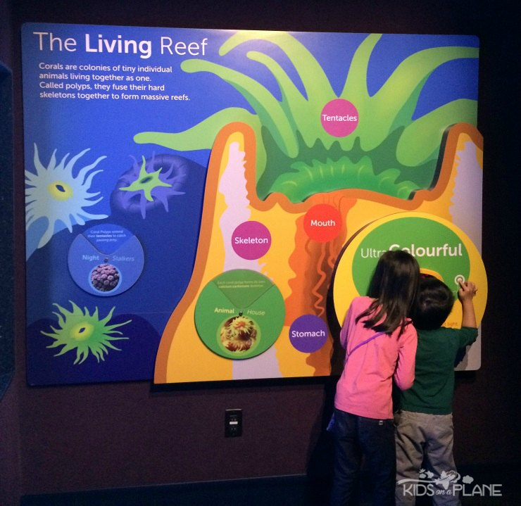 Ripleys Aquarium of Canada Toronto Ontario - Kids On A Plane Review