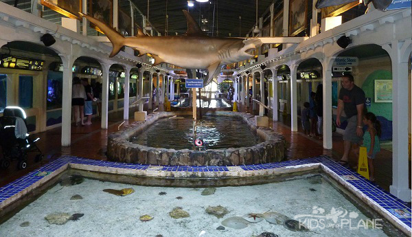 Cruise Port Review - Key West Florida - Key West Aquarium