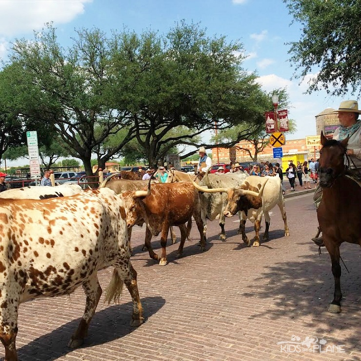 Things to Do with Kids in Fort Worth Texas - Visit the Fort Worth Stockyards for a taste of the Wild West