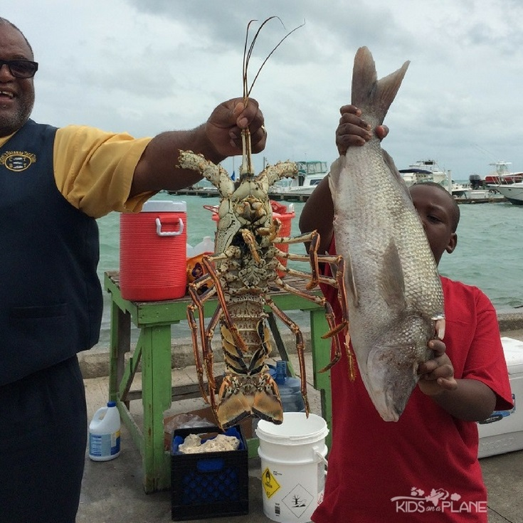 Things to do in Nassau Bahamas with Kids besides Atlantis - private sightseeing tour with Cheryls Taxi