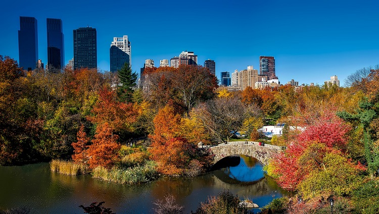 Free things to do with kids in NYC including Central Park