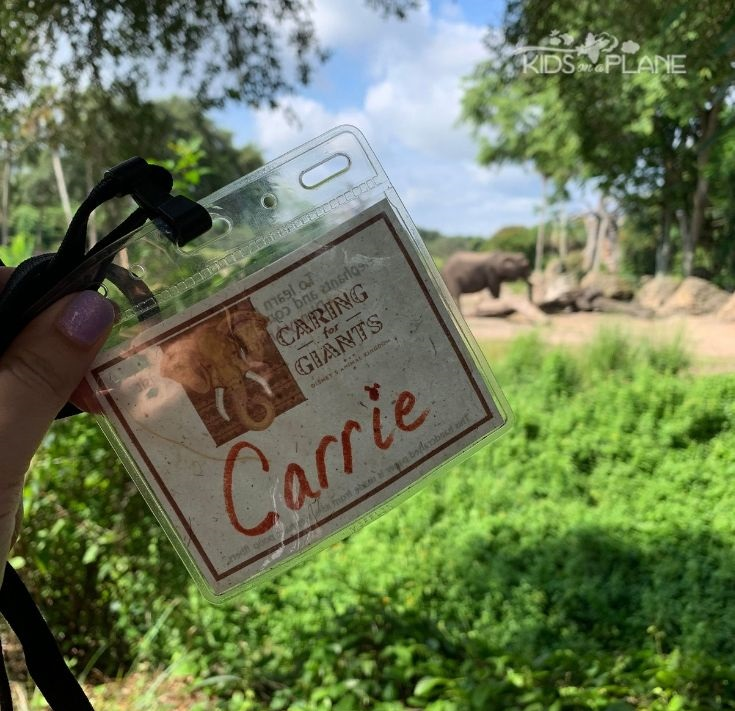 Caring for Giants Animal Kingdom - Top Splurges at Disney World Orlando