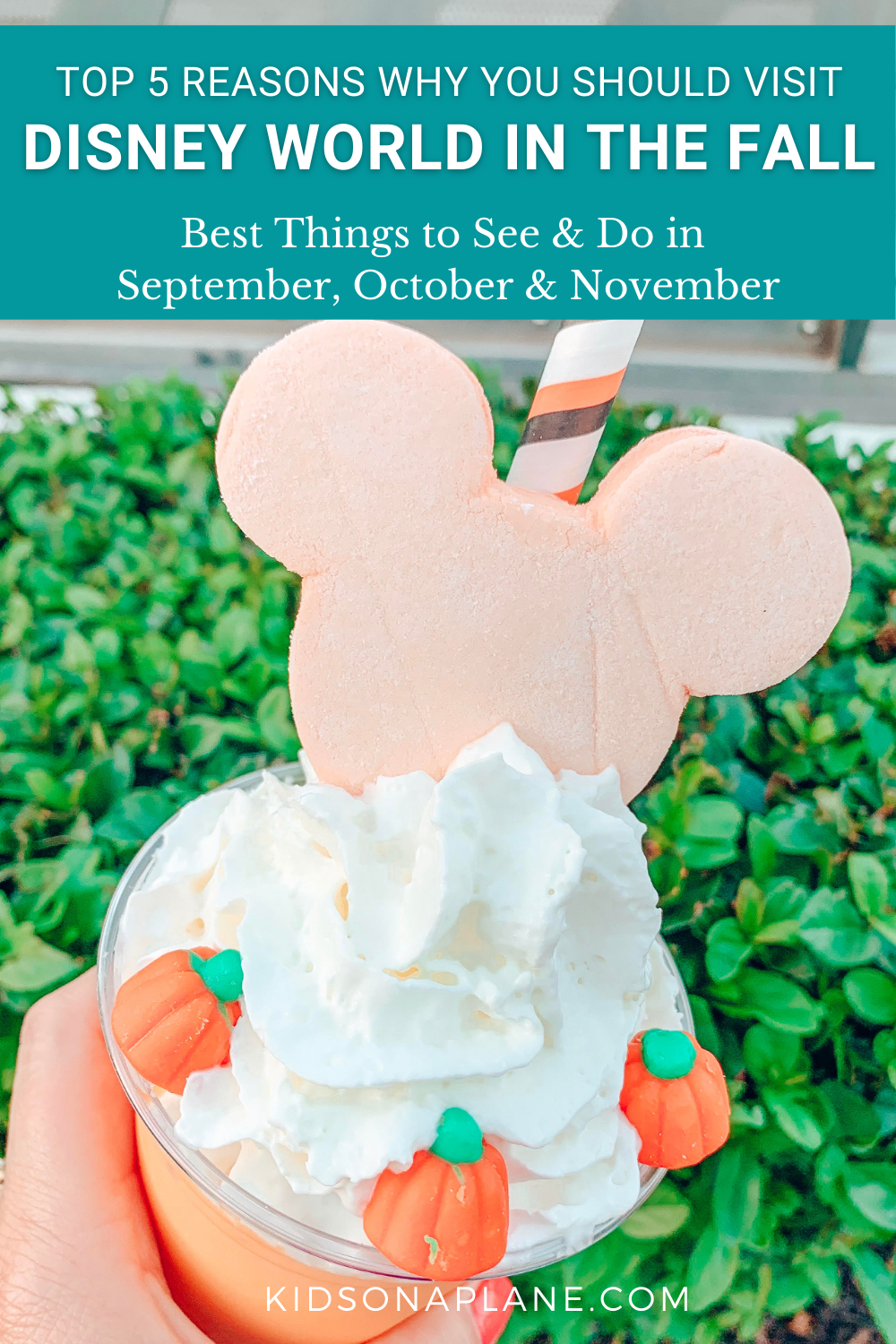 Reasons to Visit Disney World in the Fall - Best Things to See and Do in August September October November