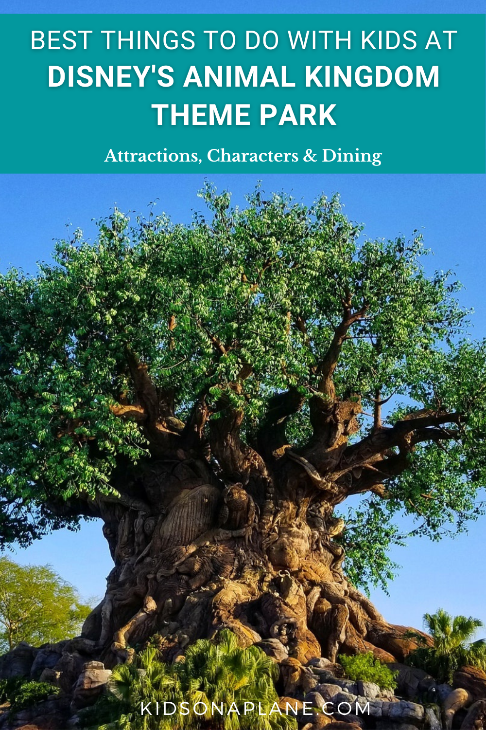 Disney World Animal Kingdom Theme Park with Kids - Best Things to Do - Rides Shows Characters and Dining