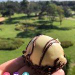 Top Snacks at Walt Disney World Resorts including Zebra Domes